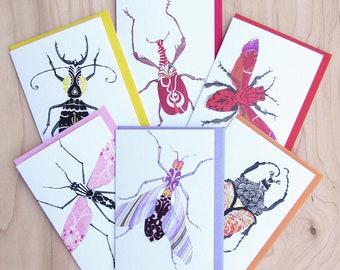 Bug Card 6-Pack 2