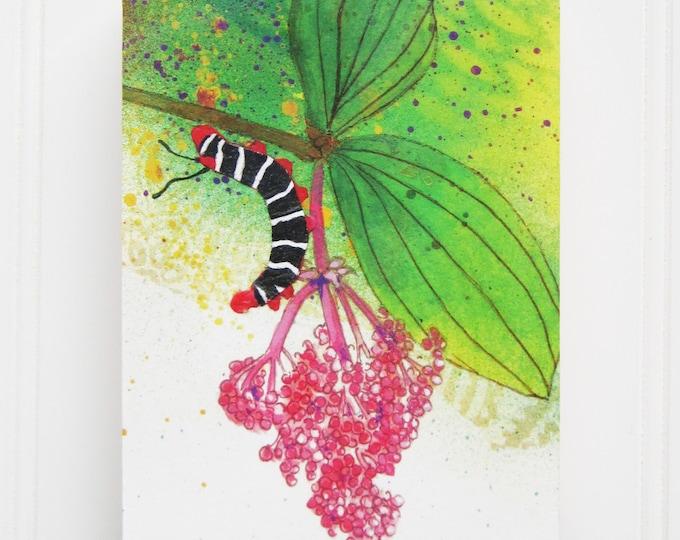 Caterpillar Print on Wood Panel (5 x 7)