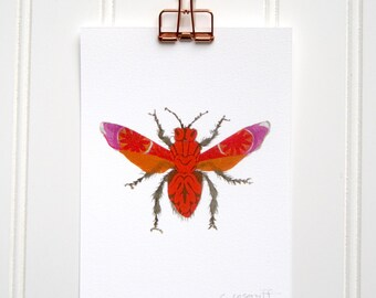 Pink and Orange Moth  Print