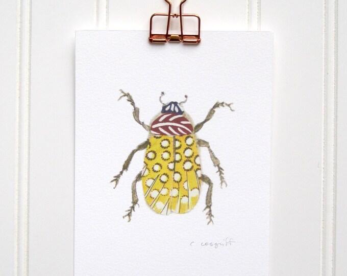 Yellow Feather Bug  Print