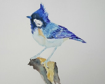 Original watercolour painting of Blue Jay, watercolour bird painting