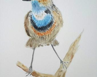 Original watercolour painting of Bluethroat