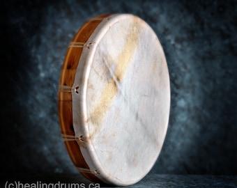 """16"""" Vision Drum"""