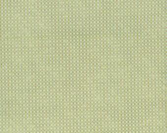 Quilting Cotton - Cotton + Steel Basics - Netorious - Mixing Bowl Metallic - Green + Gold