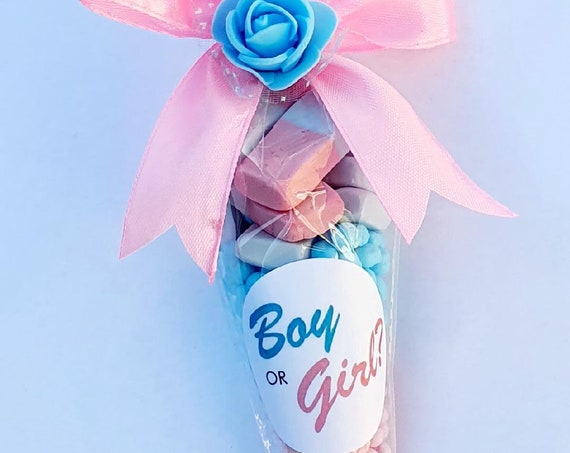 Baby Shower Gender Reveal Favours Sweet Cones Pink and Blue Candy Unisex (Qty 5)