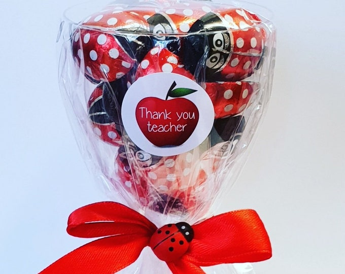 Lady Bug Prefilled Favours Teacher Gift Chocolates Ladybird School