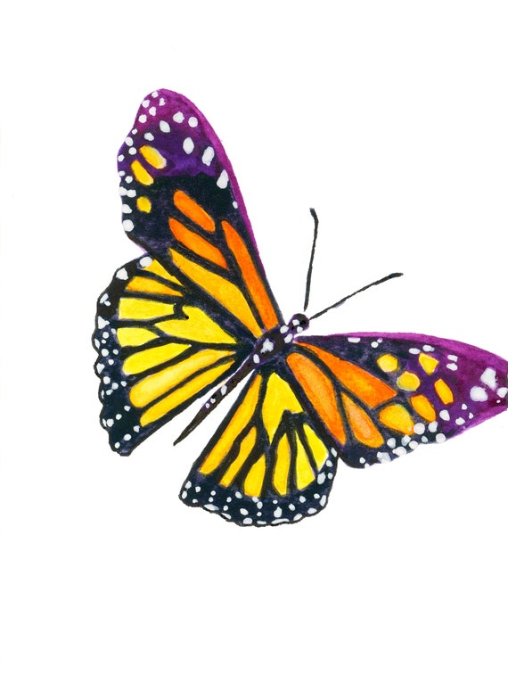 Butterfly Card Monarch Butterfly Cute Animals Greeting Etsy Happy birthday to you butterflies | cards galore. etsy