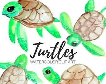 Turtle Clip Art - Watercolor Clip Art - Animal Clip Art - Cute Animals - Ocean clip art  - commercial use