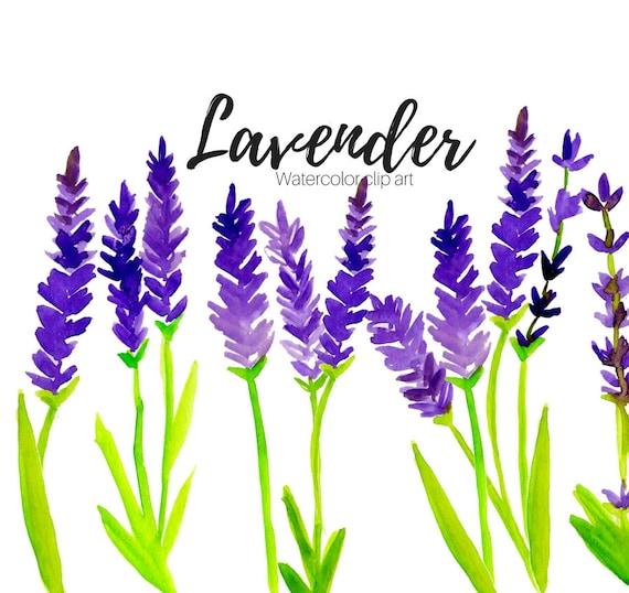 lavender clipart floral clipart scent clipart flower etsy rh etsy com lavender clipart black and white lavender clip art border free