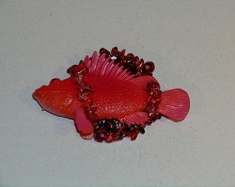 Sea brooch, Goldfish