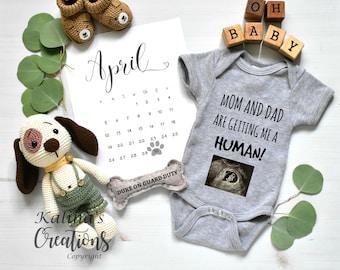 Dog Pregnancy Announcement - Social Media Announce