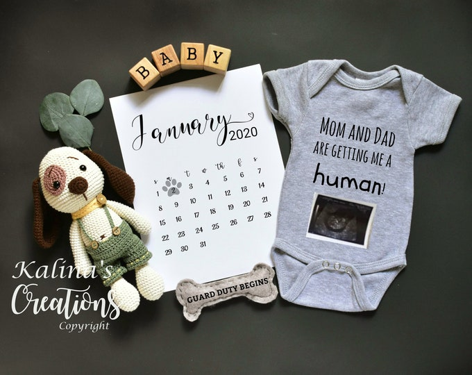 Pregnancy Announcement - Dog Baby Announcement for Social Media Announce