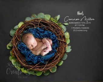 Birth Announcement Stats Printable Card