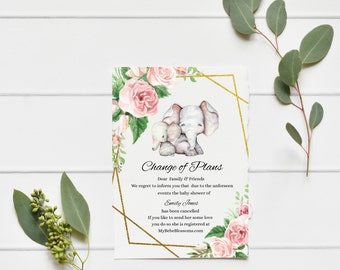 Change of Plans Baby Shower Ferns and Boho Elephant Ferns