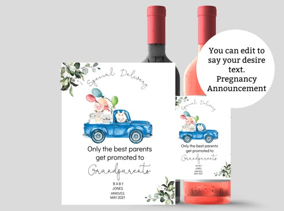 Pregnancy Announcement Wine Label Drive By Masked Animals