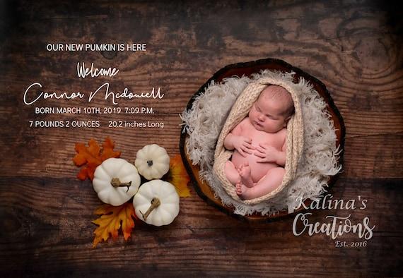 Newborn Digital Backdrop Little Pumpkin