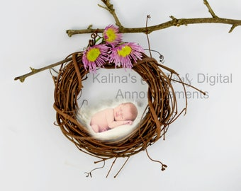 Christmas Newborn Photography / Christmas December Newborn Photo