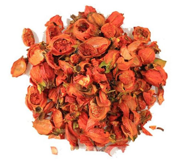 Dried Gardenia Fruit Medicinal Korean Herbs Gardenia Etsy
