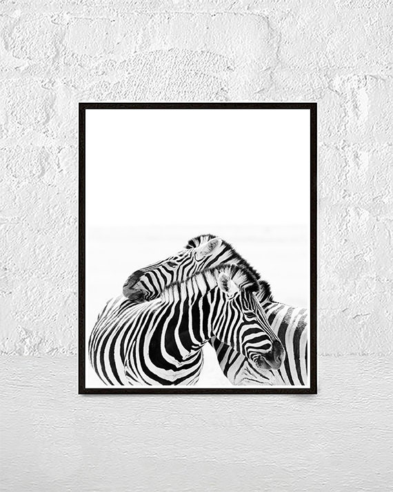 zebra print animal print african animals zebra wall art   Etsy