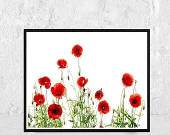 flower print, floral print, flower art, flowers print, flower photography, botanical print, flower poster, floral decor, botanical prints