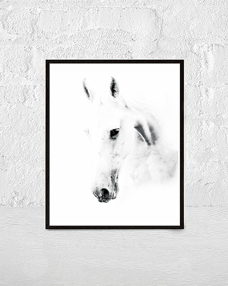 Horse photo black and white photography horse print wall etsy
