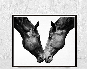 horse print, horse wall art, black and white, fine art, horse photo, large print, animal print, nursery decor, nursery wall art, art prints