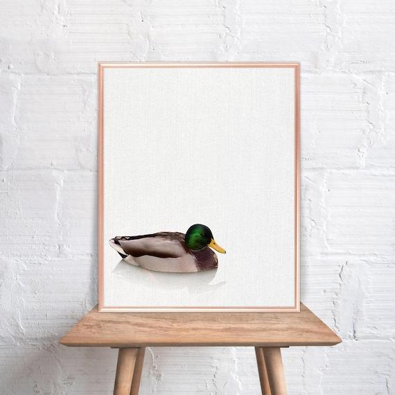 Duck Home Decor: Duck Wall Art / Duck Home Decor / Duck Print / Home Decor