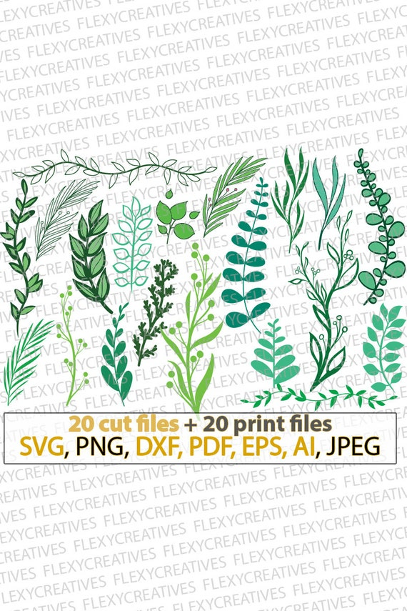 Leafs Svg Plants Leaves Tropical Leaves Forest Leafs Sea Etsy