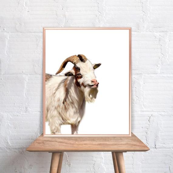 Goat Wall Art Goat Home Decor Goat Print Goat Goat Art Etsy