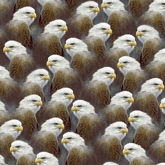 Majestic Eagles by Quilting Treasures 1 yard Fabric Outdoors Eagle Wildlife Hautman