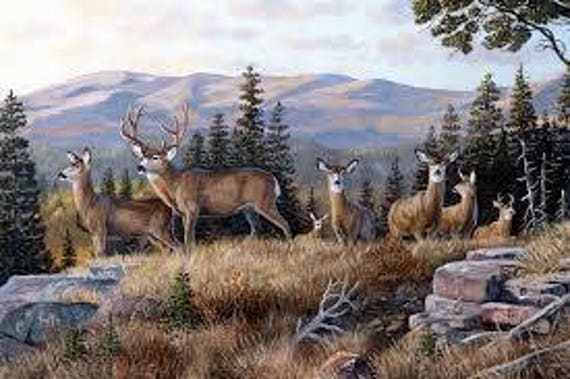 "Northcott Naturescapes ""High Ridge Crossing"" Deer Fabric Panel"