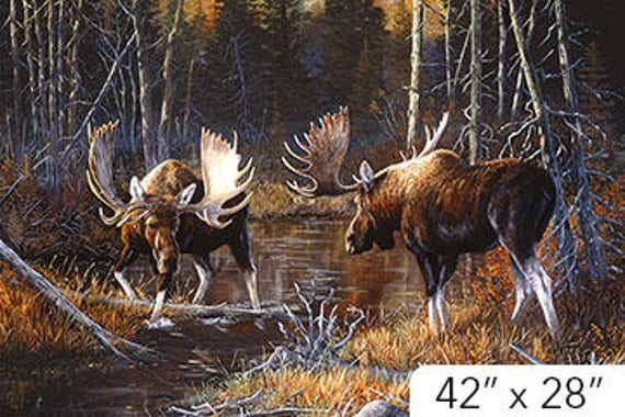 Majestic Moose Panel by Northcott Studio DP21825