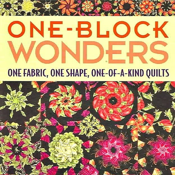One Block Wonders One Fabric One Shape One of a Kind Quilts