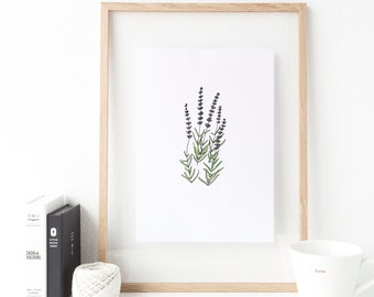 Minimalist botanical print, botanic herb prints,  lavender wall print, botanical print set, kitchen decor herb print, herb art print