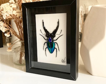 Haute Couture insect embroidery in frame