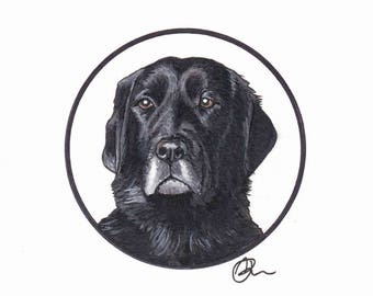 Pet Commissioned paintings