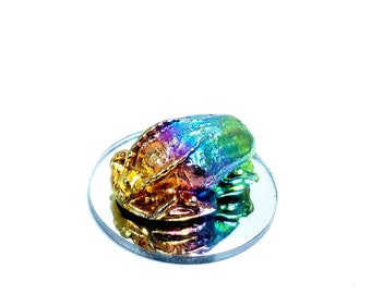 Bismuth Scarab Beetle