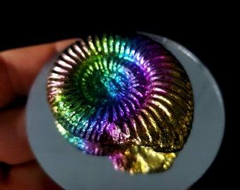 Bismuth Fossil
