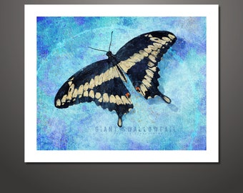 Butterfly art, Giant Swallowtail, Butterfly Print, Nature Art, Butterfly Painting, Wildlife Painting, Wall Decor