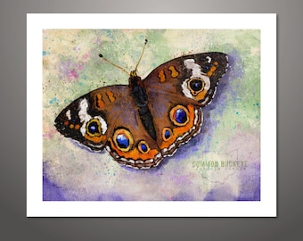 Butterfly, Butterfly Art Print, Wall Art, Home Wall Decor, Butterfly Illustration, Insect Art, Nature Art, Butterfly Gift