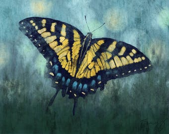 Tiger Swallowtail Butterfly, print