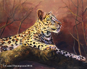 African Leopard  wildlife oil painting print giclee print spotted cat wildlife