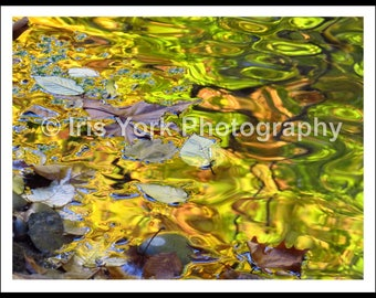Water Abstract Photo, Leaves and Trees in the Fall Gold Reflections in Stream, Impressionistic Art, Nature, Landscape, Wall Art, Woodstock