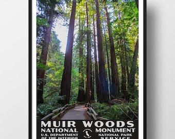 Muir Woods Bird Marin California Travel Vintage Poster Repro FREE SHIPPING