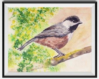 CHICKADEE PRINT, Cute Watercolor Bird, Chickadee Art Print, bird art, chickadee art, bird print, chickadee, Bird watercolour, Valentines day
