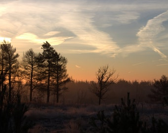 Sunrise Pirbright