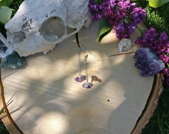 Pendant Earrings Amethyst Circle