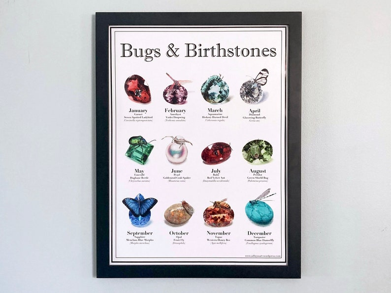 Bugs and Birthstones  Full sized poster image 0