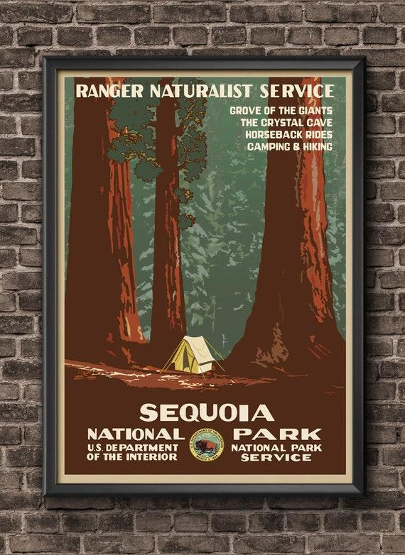 Redwoods National Park Posters Vintage Sequoia Travel Poster Etsy