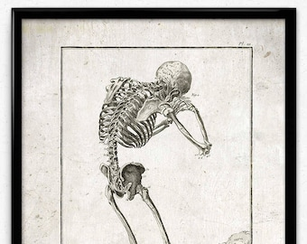 Crying Skeleton Vintage Print - Skeleton Poster - Anatomy Skeleton Art - Office Decor - Office Art - Doctor Decor - Anatomy Print